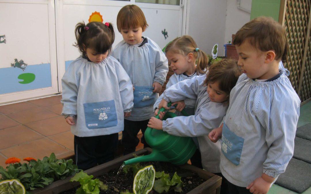 Som escola verda!!