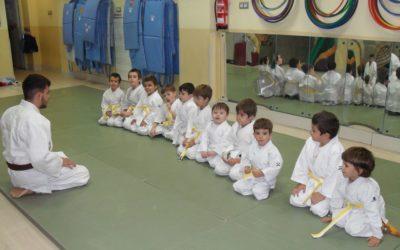 El Judo, psicomotricitat i valors.