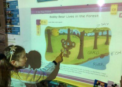 bobby bear-4