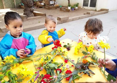 experimentacio flors-1