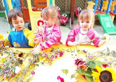 experimentacio flors-2