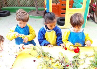 experimentacio flors-3