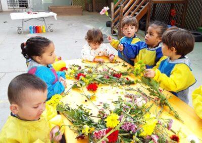 experimentacio flors-4